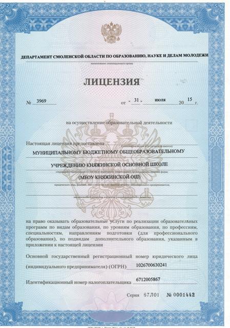 Стр1 Лицензия