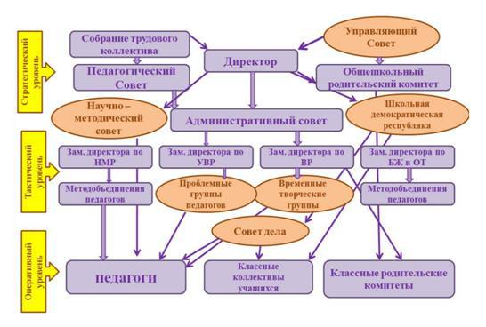 Структура органов управления МБОУ СОШ №36